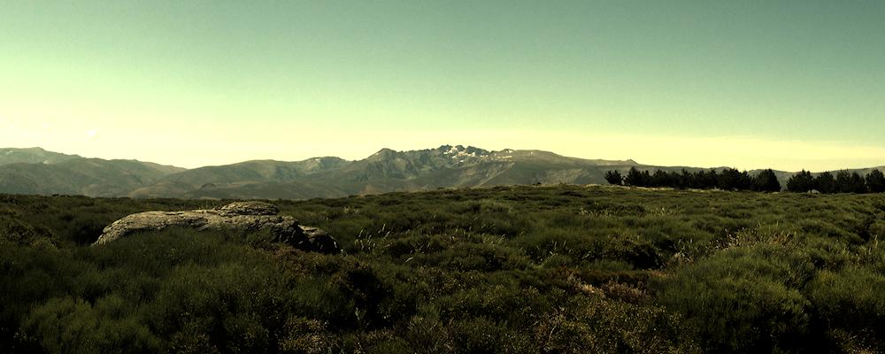 Ruta por las Dehesas de Horcajo y Navasequilla