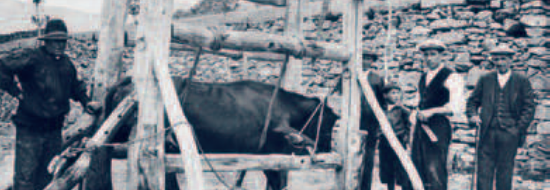 asi_eramos_1932_03
